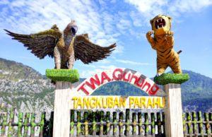 wisata gunung tangkuban parahu