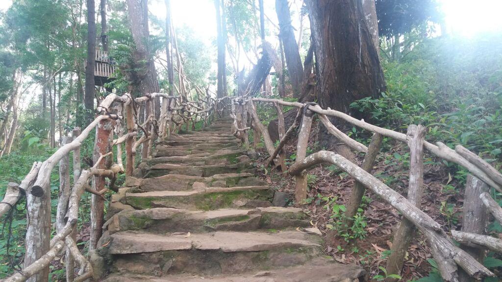 Jalur trekking menanjak