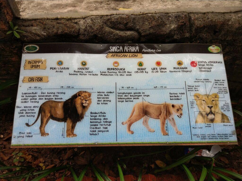 Deskripsi dan informasi tentang hewan-hewan di Taman Hewan Pematang Siantar