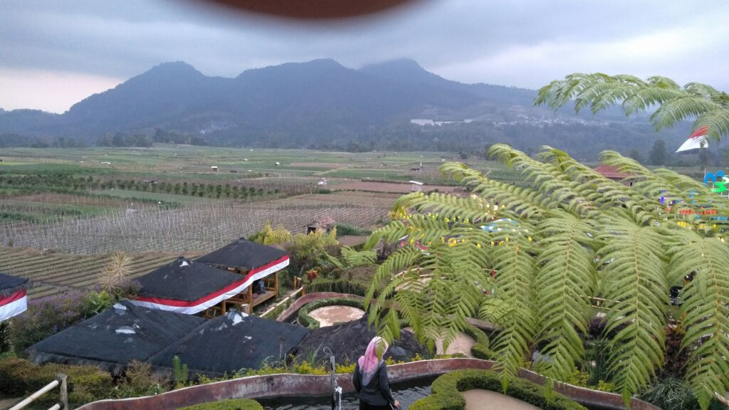 tempat wisata di Malang dengan tema Kafe tengah sawah