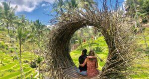 panorama terasering alas harum agro tourism bali