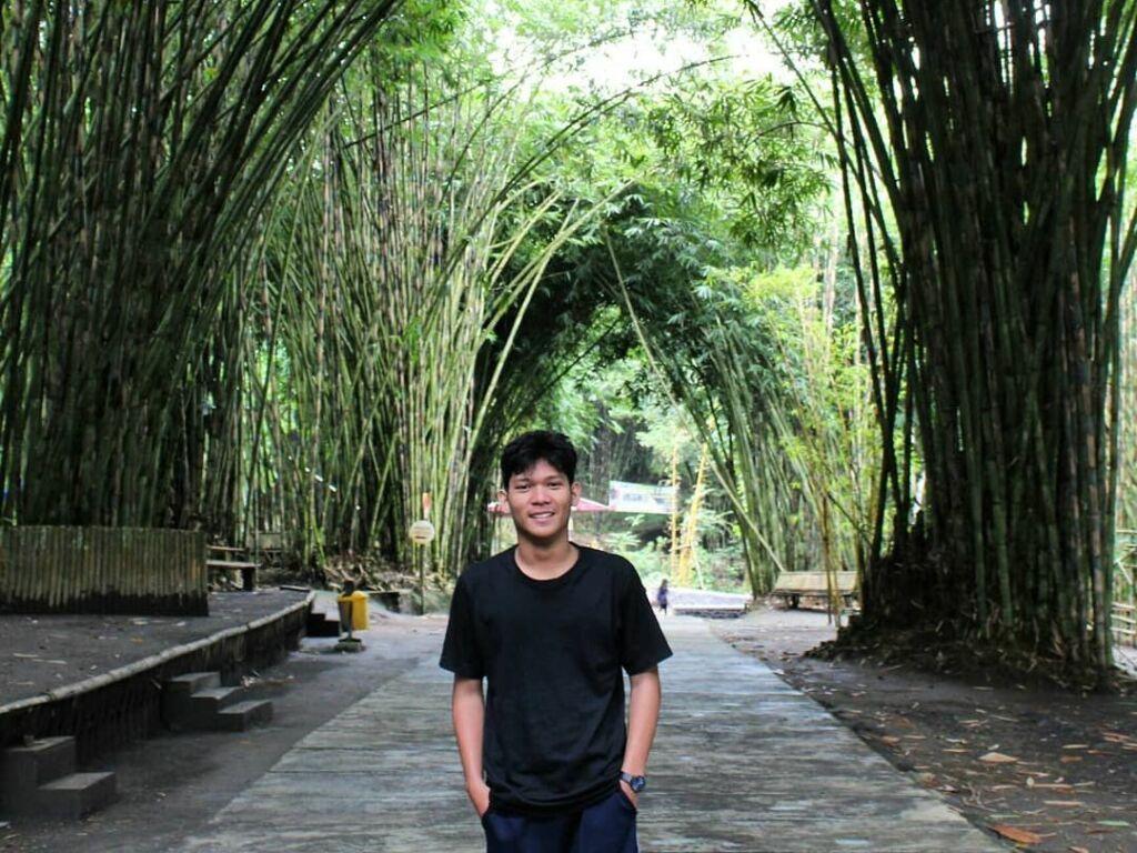 foto unik di tengah jalan setapak berkanopi pepohonan bambu