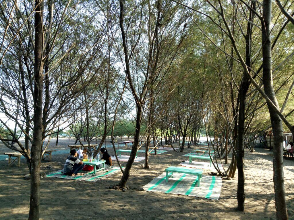Keluarga Berpiknik Diantara Pohon Cemara di Pantai Cemara. Foto: Google Maps / frank journey