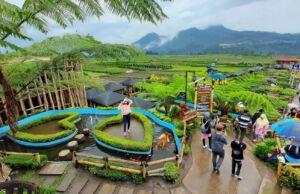 suasana alam pedesaan di Cafe Sawah Pujon Kidul