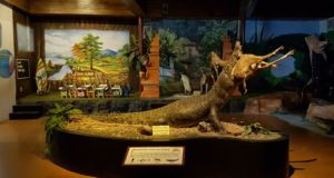 Diorama Buaya di Predator Fun Park Batu. Foto: Google Maps / hardian suprapto