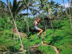 Meluncur dari ketinggian dengan Flying Fox di Terrace River Pool Swing Gianyar Bali - terraceriverpoolswing