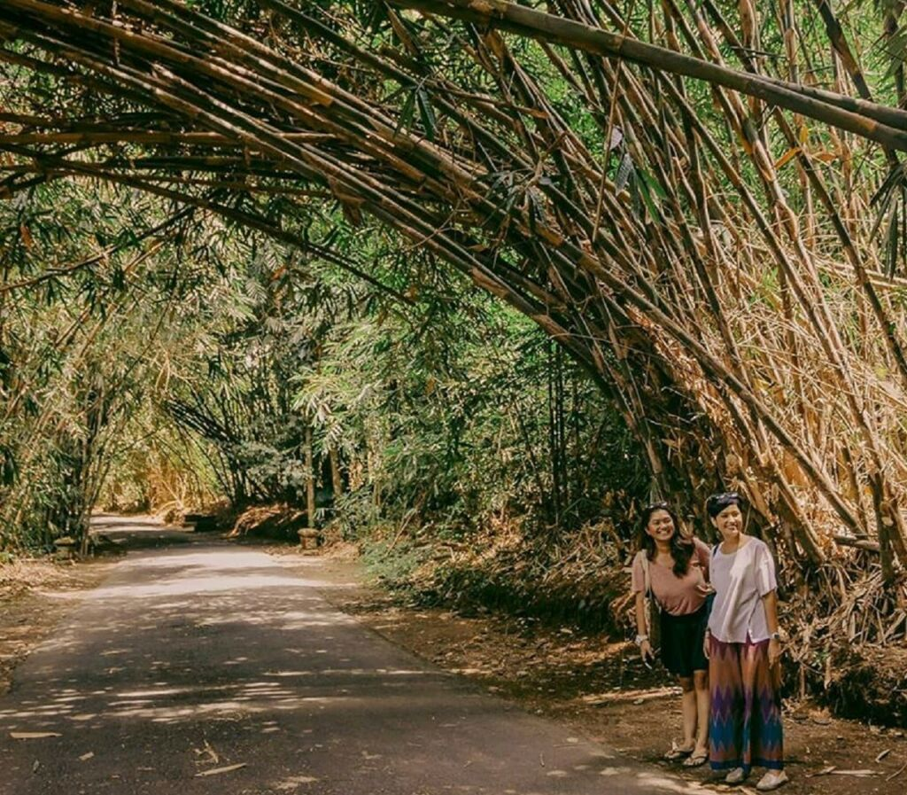 Menikmati kesegaran udara di bawah naungan rumpun bambu