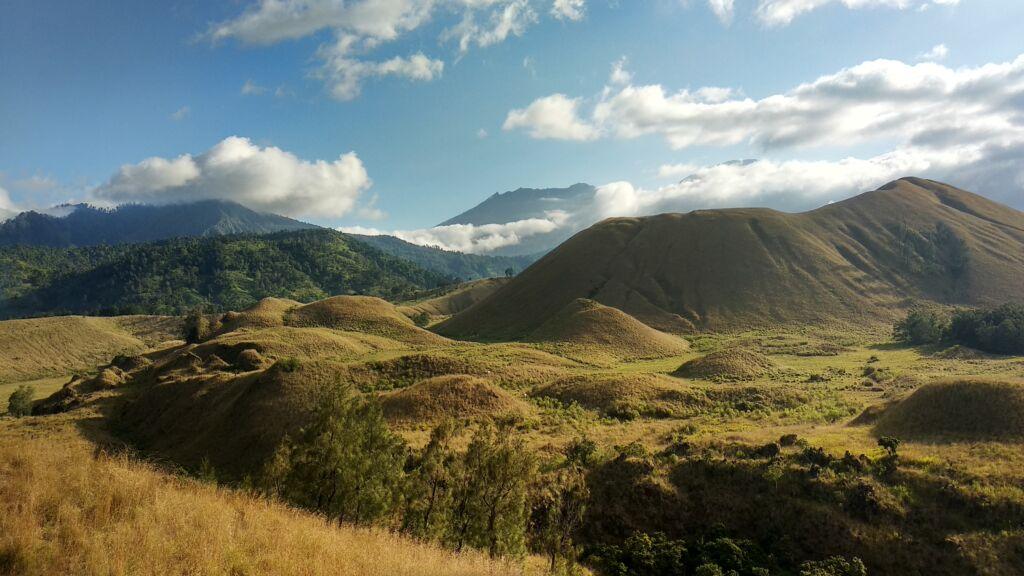 pemandangan padang rumput dengan area perbukitan