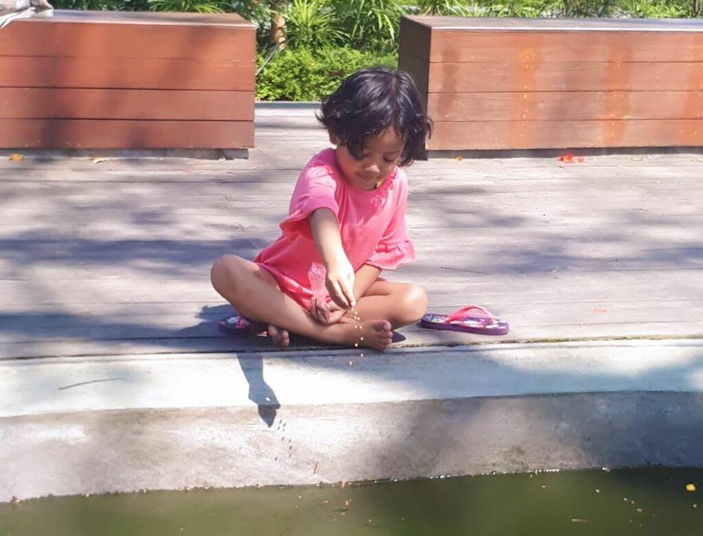anak-anak memberi makan ikan di taman sekartaji