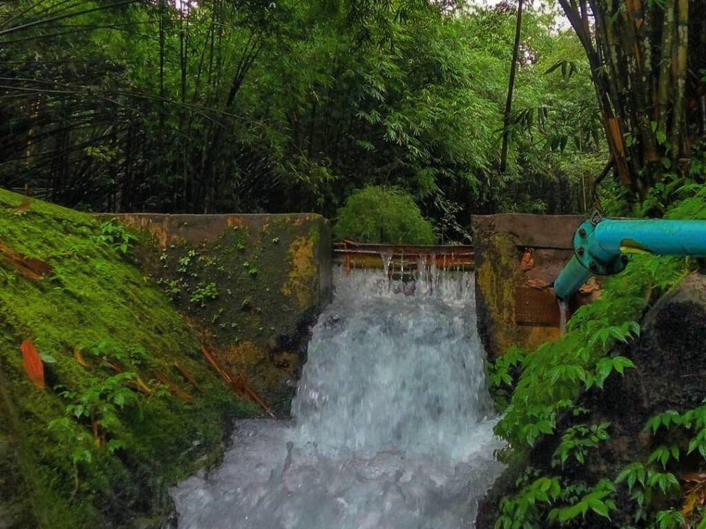 Sumber air mengalir di Hutan Bambu Lumajang. Foto: instagram / iwan.sh