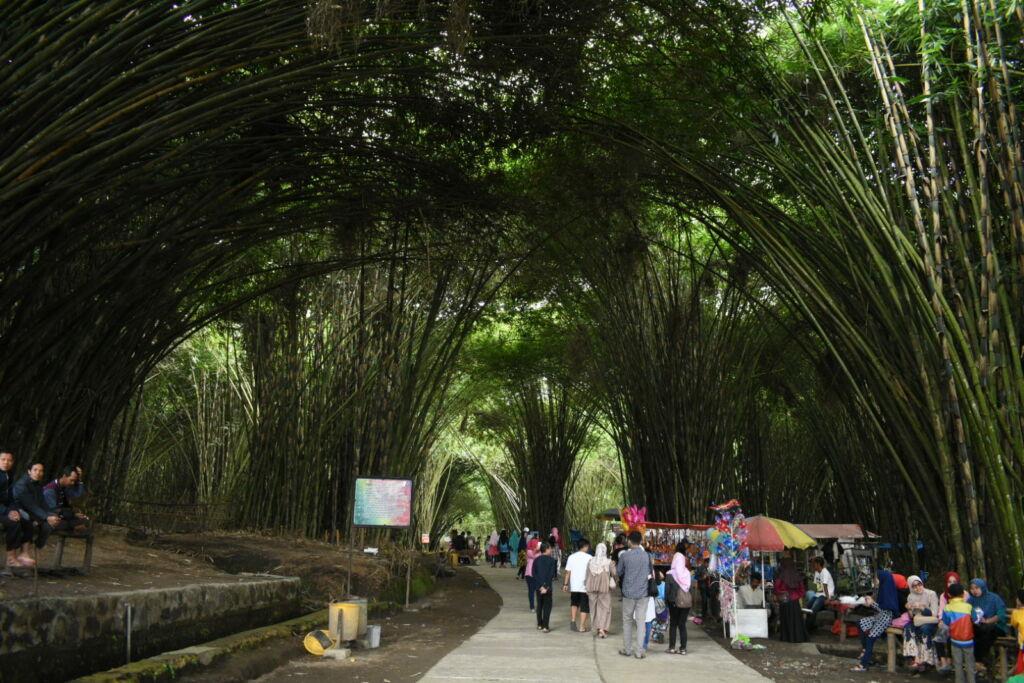 suasana hutan bambu dipadati pengunjung