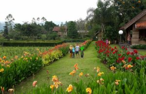 area villa dan taman di kebun bunga situhapa
