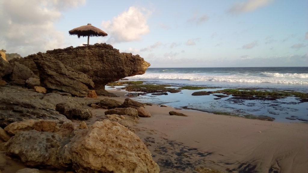 bersantai di atas batu karang