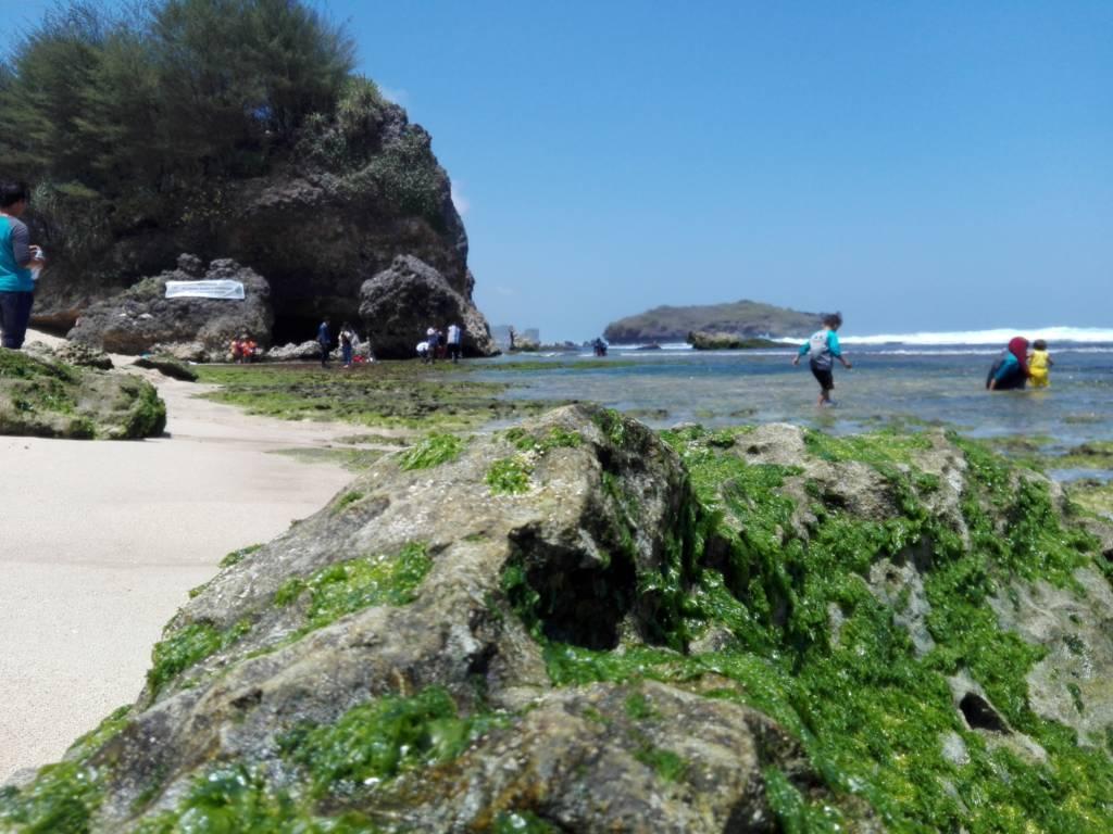 Gua batu karang