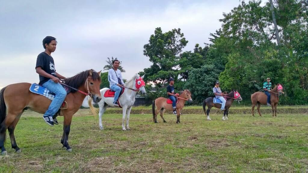 Jogja Exotarium Tempat wisata di Jogja untuk berkuda