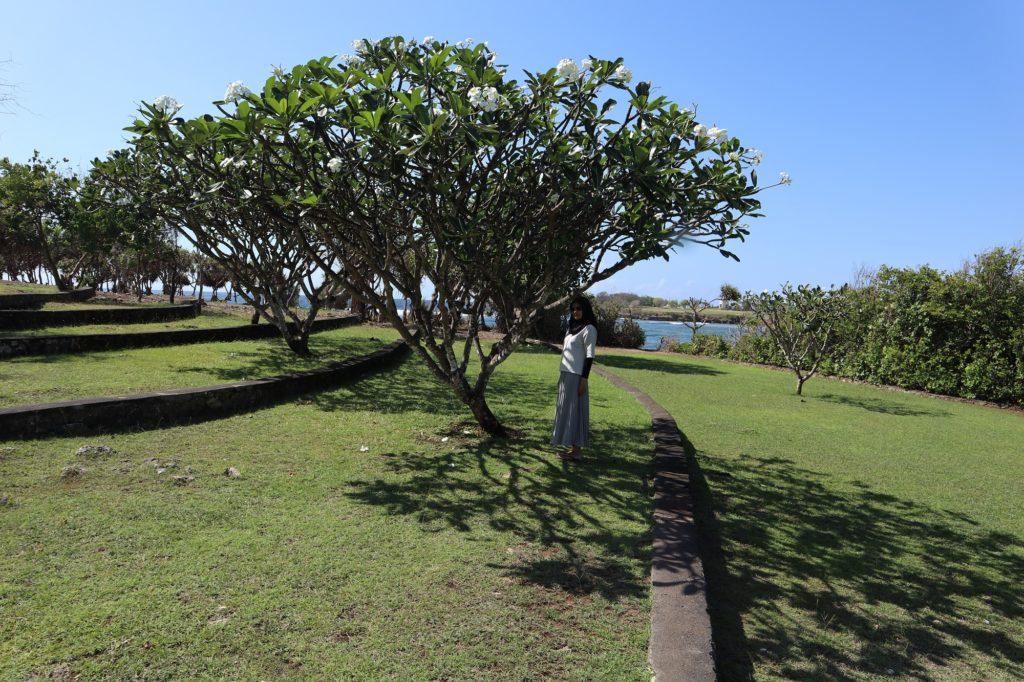 Hijaunya Pulau Peninsula Nusa Dua