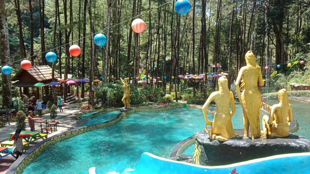 kolam renang di tengah hutan pinus