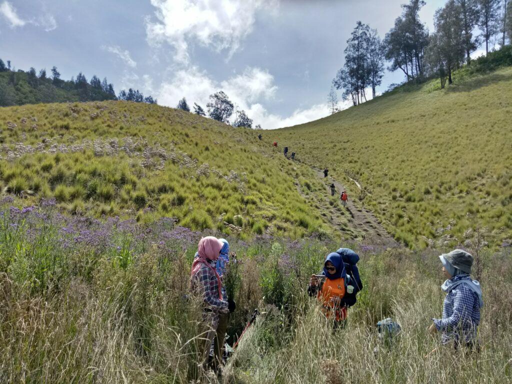 Perbukitan Hijau di Jalur Pendakian Gunung Semeru. Foto: Google Maps / juniar eko chrissanto