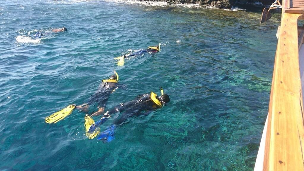 Wisatawan tengah Menikmati Indahnya Alam Bawah Laut Batu Bolong