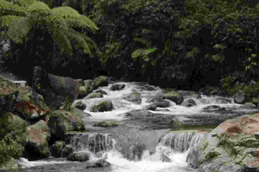 Aliran Air Terjun yang Melewati Batuan