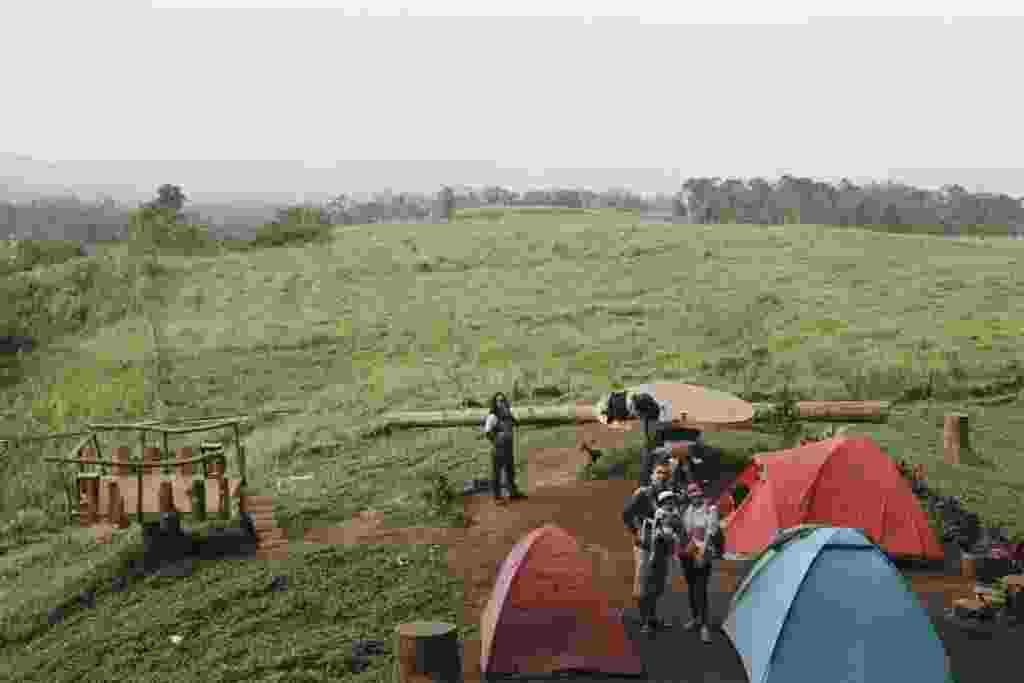 Camping Ground di Hutan Pinus Limpakuwus