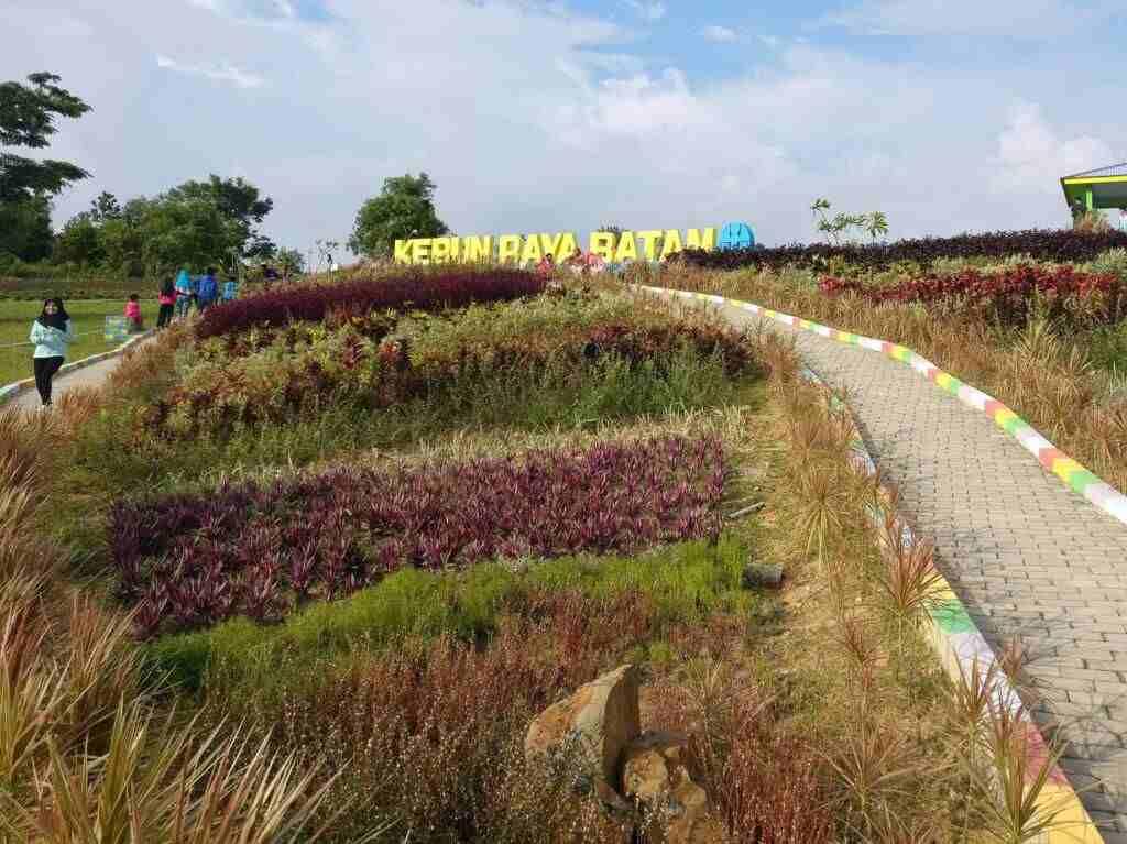 Kontur lanskap taman yang berbukit-bukit di Kebun Raya Batam Kepulauan Riau - Adi Kurniawan