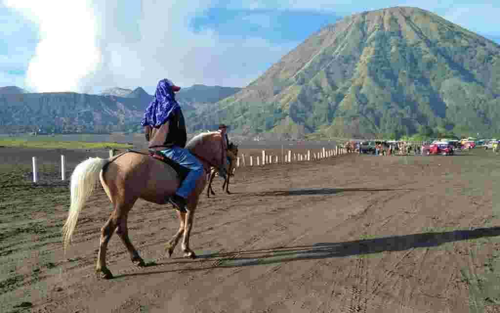 pengunjung sedang menunggang kuda di area lautan pasir boromo