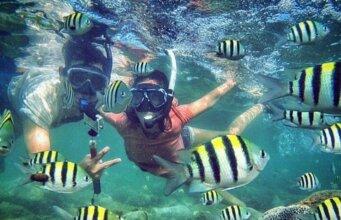 Snorkeling Taman Laut Nasional Bunaken Wori Sulawesi Utara - Datuk Bertuah