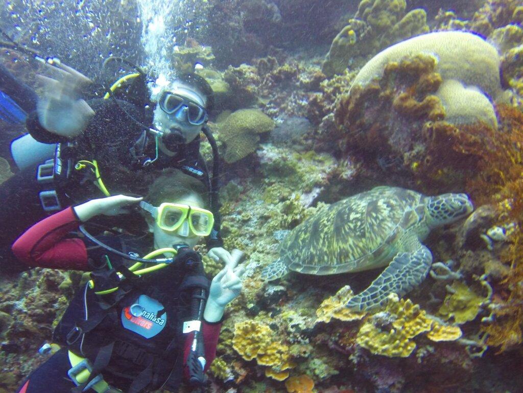 menyelami keindahan terumbu karang di taman nasional bunaken