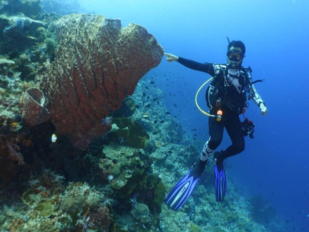 penyelam sedang mengeksplorasi bawah laut bunaken