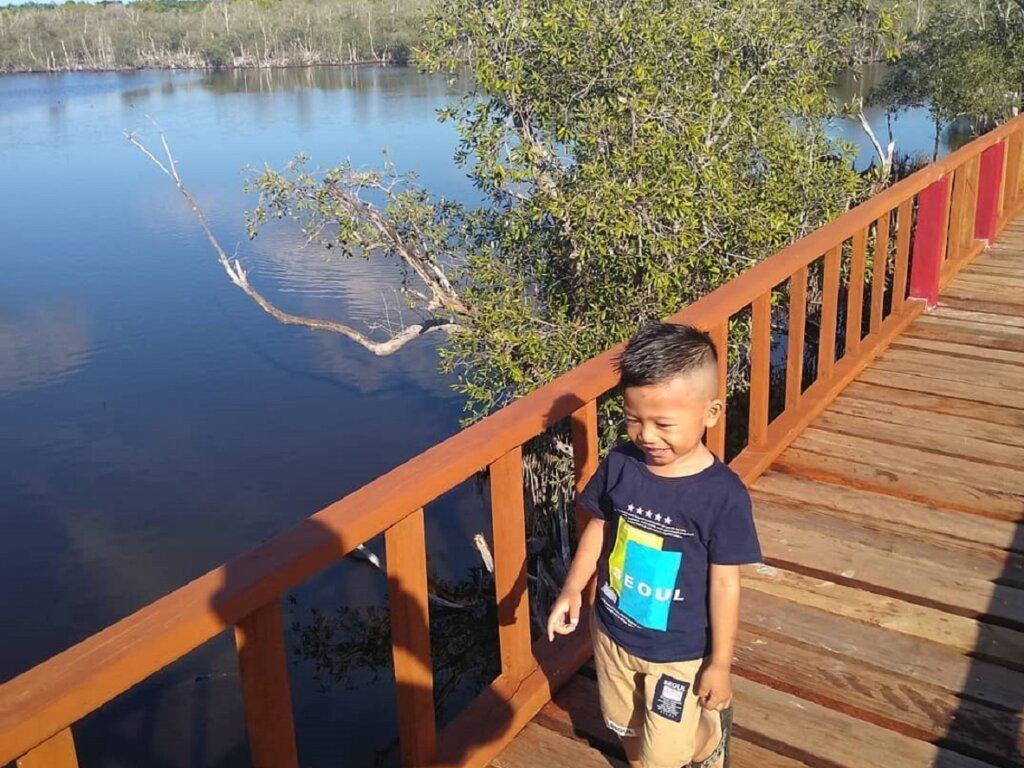 jalan setapak kayu hutan mangrove