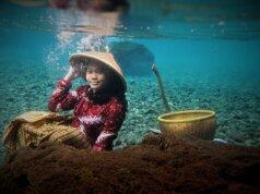 Berbagai Properti Disediakan untuk Foto Underwater