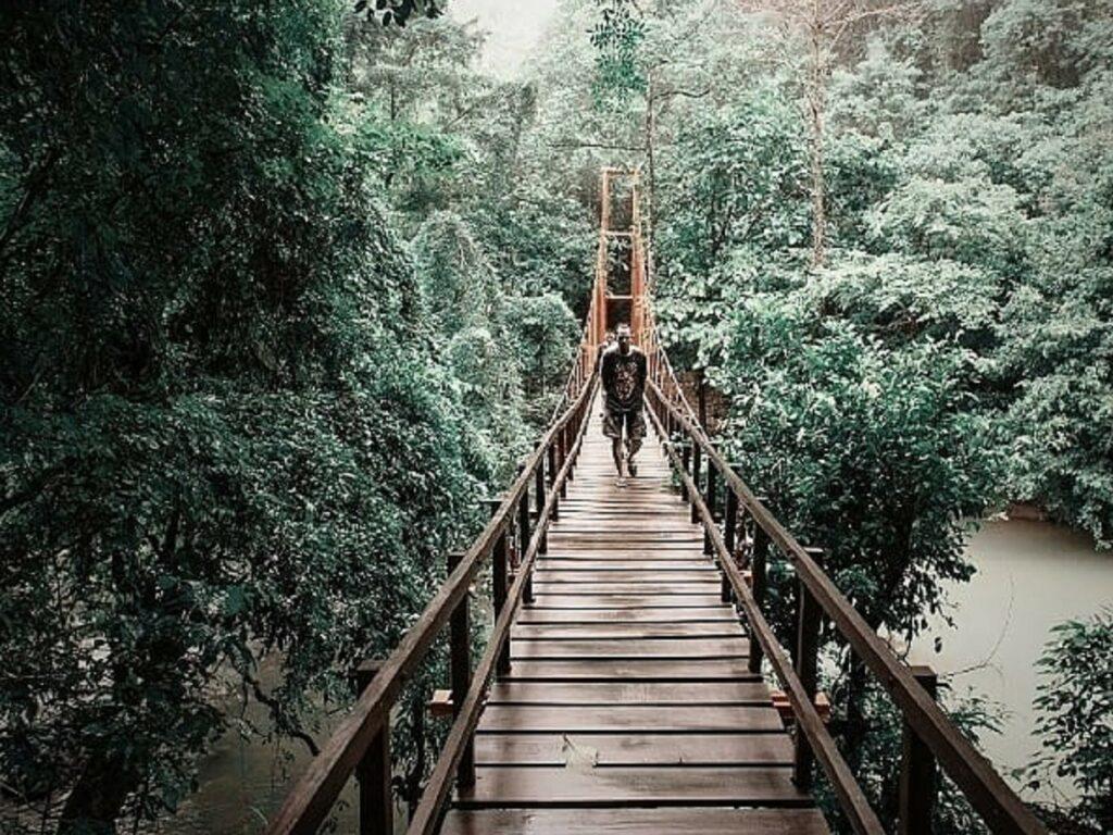 Melintasi Biseang Labboro Taman Nasional Bantimurung Bulusaraung Pangkajene dan Kepulauan Sulawesi Selatan - arixdian