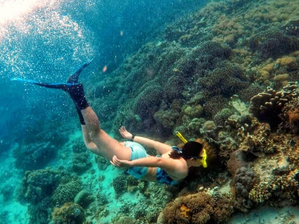 Aktivitas Snorkeling lepas pantai tanjung bira