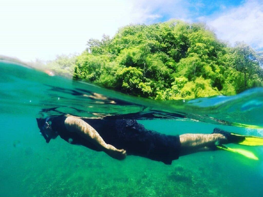 Snorkeling di perairan Kepulauan Selayar