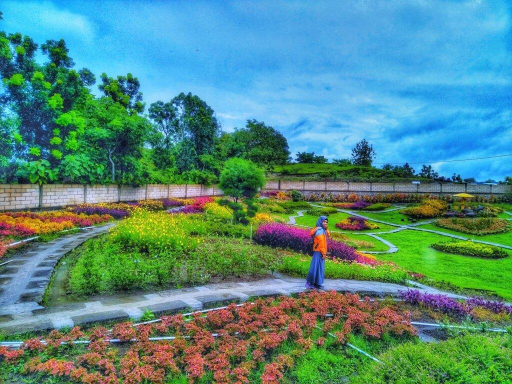 taman bunga warna-warni