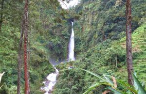 kawasan hutan sekitar air terjun curug bajing pekalongan
