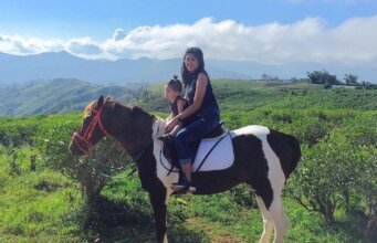 Berkuda menjelajahi kawasan perkebunan teh Malino Highlands Gowa Sulawesi Selatan - malinohighlands