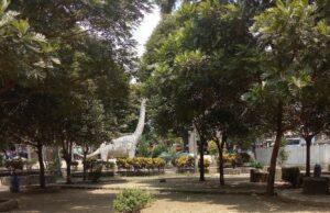 Menikmati Teduhnya Area Taman
