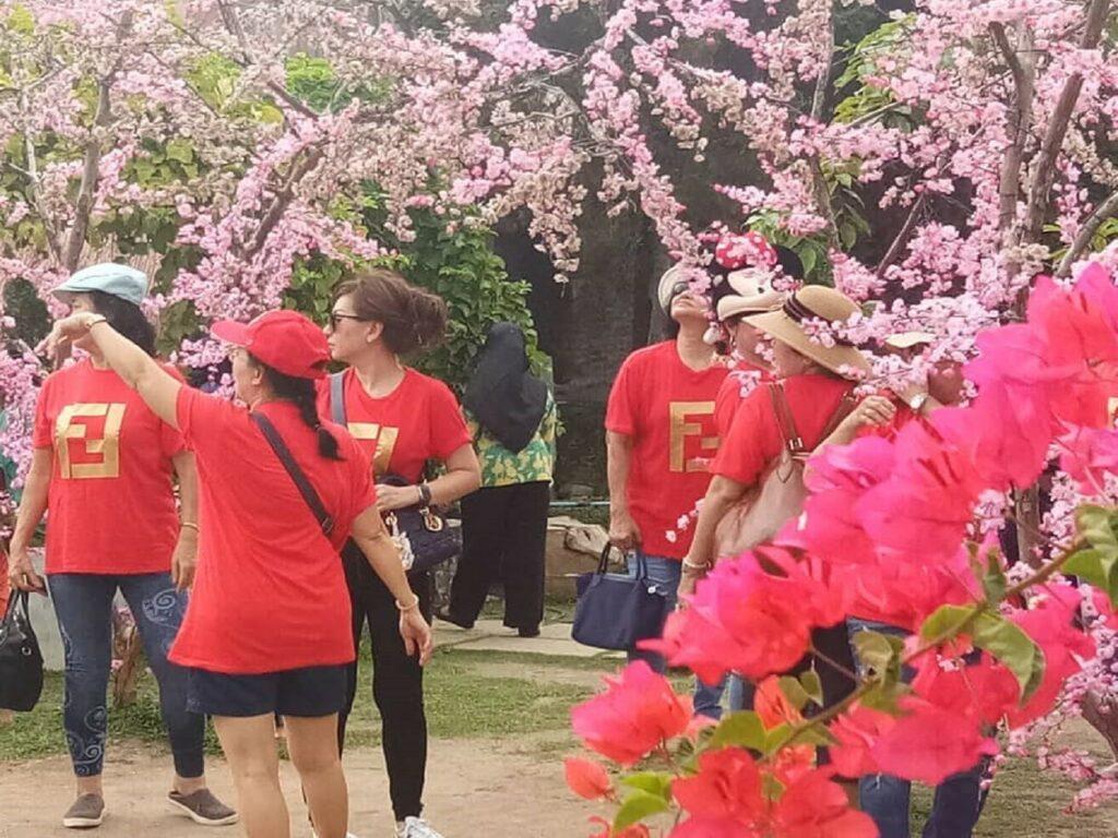 Dusun Sakura Dogi Park Waterboom Batu Bara Sumatera Utara - dogipark_waterboomindrapura