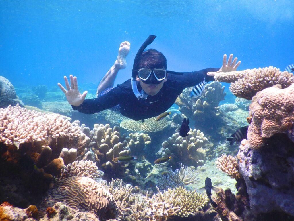 snorkeling diantara warna-warni terumbu karang pulau panjang