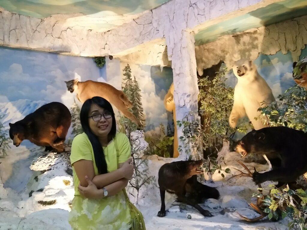 Ruang pajang beruang di Rahmat Museum