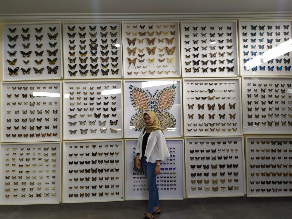 Berfoto dengan latar koleksi kupu-kupu