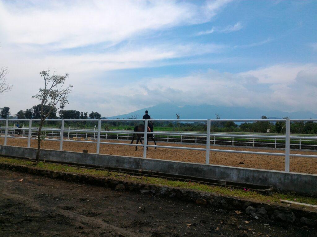 Berkuda di Area Pacu