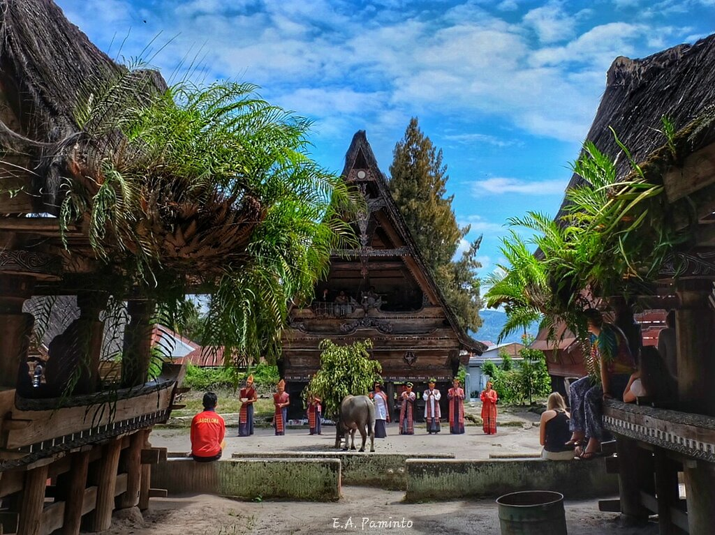 Kompleks Museum Huta Bolon Simanindo. Pengunjung tengah menyaksikan pertujukan Tari Tor Tor