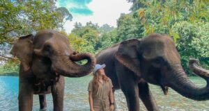 Memandikan gajah di Tangkahan Cru Langkat Sumatera Utara - syaraisa1902