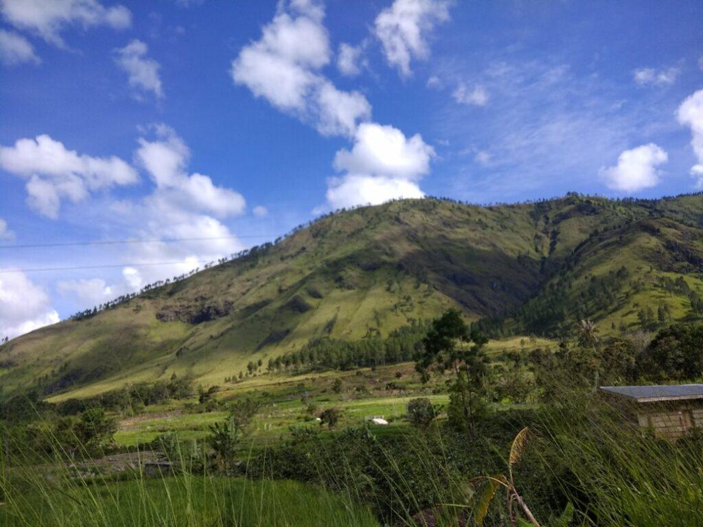 Sawah dan hutan hijau, pemandangan alam menuju Air Terjun