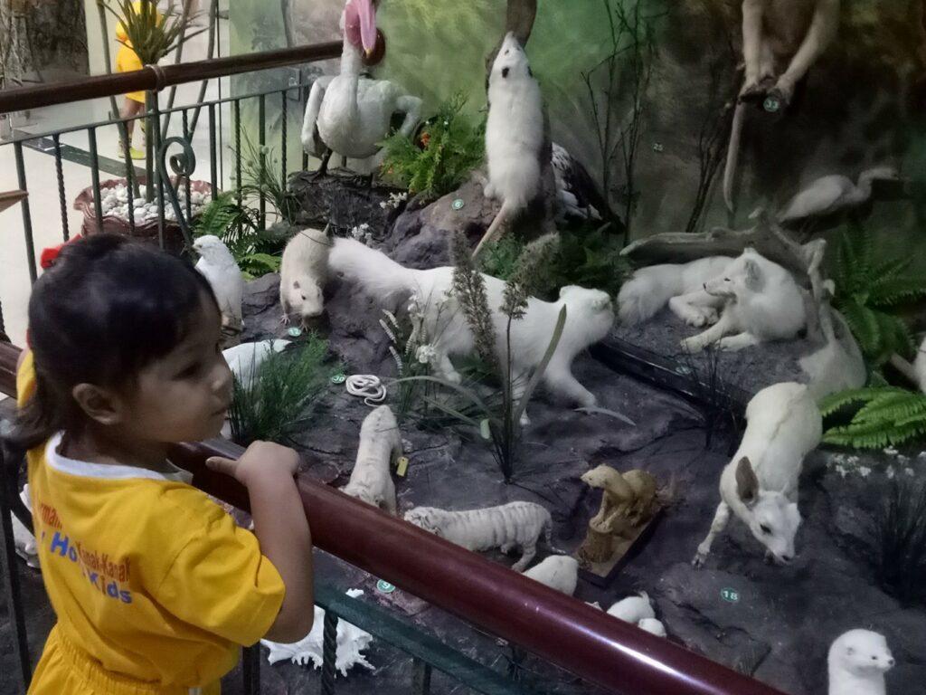 Rahmat International Wildlife Museum & Gallery Medan Sumatera Utara sebagai destinasi wisata edukasi - Robertus Situmeang