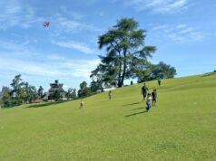 hamparan padang rumput hijau bukit kubu