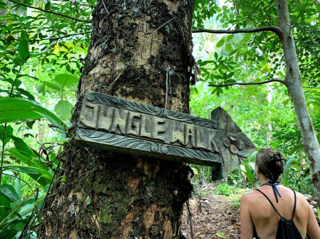 Akses Taman Nasional Siberut